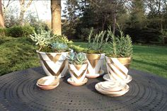 delight by design: DIY {metallic graphic pots}