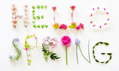 Our tried and tested spring products for optimizing holistic health. Natural all the way!
