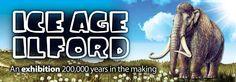Redbridge Museum Ice Age Ilford exhibition