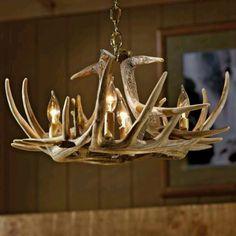 antler chandeliers on pinterest antler chandelier antlers and deer