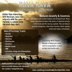 Benefits of Kava Kava. I've tried every prescription for anxiety and insomnia, and after two years with the side effects nearly fatal...I decided to stop...kava is the only thing that relieves both with no side effects for me.  I should have stuck to what I know...don't stray away from your roots n culture.  Modern meds is not always better for you!