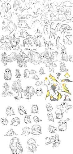 .Derp Animals. by hino-kit.deviantart.com on @DeviantArt