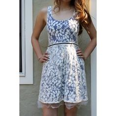 Anthropologie Dresses & Skirts - Anthropologie Blue/White Lace Dress