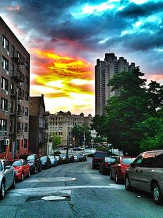 The Bronx--Tracys New York Life | A blog about life in New York City: Springtime in the Bronx