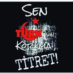 Sen Türk'sün