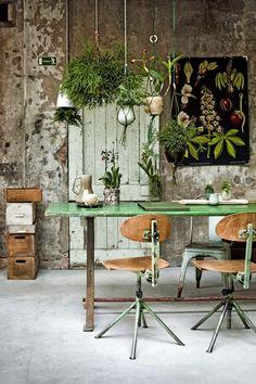 Ontwerpfabriek Snor: Planten in huis