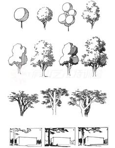 Tree Sketches, Anime Drawings Sketches, Ink Pen Drawings, Tree Line Drawing, Architectural Trees, Ink Pen Art, Architecture Concept Drawings, Nature Drawing, Landscape Drawings