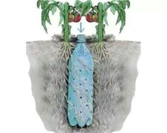 Good irrigation idea