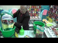Семинар: Выращивание земляники из семян - YouTube