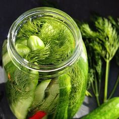 Fermented Kosher-Style Dill Pickles Half Sour Pickles, Kosher Dill Pickles, Icebox Pickles, Kirby Cucumber, Gallon Mason Jars, How To Make Pickles, Making Pickles, Homemade Pickles, Pickles Recipe