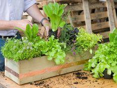 30 ιδέες οργάνωσης και διακόσμησης κήπου για την Άνοιξη 2015