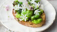 Bei dieser Köstlichen Kleinigkeit isst das Auge mit: Brot mit Bohnen, Blüten und Kräutern | http://eatsmarter.de/rezepte/brot-mit-bohnen-blueten-und-kraeutern