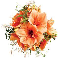 Orange Amaryllis Wedding Bouquet Wedding Flowers ❤ liked on Polyvore