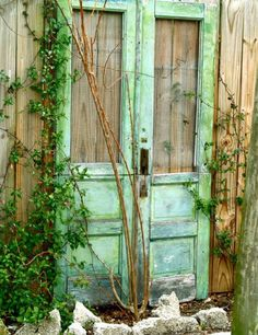 Old doors against fence... I did this very thing bout 7 years ago and am now needing new door as mine has deteriorated..... yep a redo this spring!