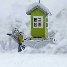 Awesome bird feeder.a british phonebox, police box, round mail boxes as designs
