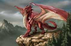 Fantasy Diamond Painting Kits that include Fairies and Dragons and all things fantasy. Beautifully designed and brilliant diamonds set these wonderful kit Medieval Tattoo, Dragon Images, Dragon Pictures, Dragon Pics, Fantasy Wesen, Dragon Rouge, Welsh Dragon, Dragon Artwork, Fire Dragon