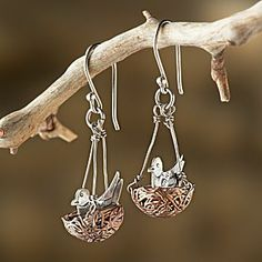 Robin's Nest Earrings | National Geographic Store