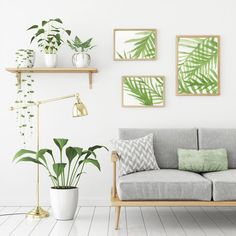 Image result for paintings of leaf types