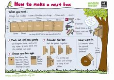 How to make a nest box  www.wildlifewatch.org.uk