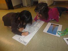 Kindergarten Inquiry, Full Day Kindergarten, Inquiry Based Learning, Project Based Learning, Preschool Math, Early Childhood Australia, Eyfs Classroom, Classroom Ideas, Learning Stories