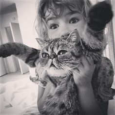 But they're also ridiculously sweet. Gus and Kelly's youngest daughter, Bea, are good friends. | These Two Persian Cats Are The Weirdest Of Friends