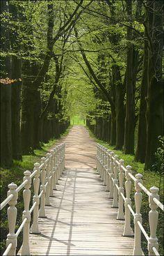 white footbridge in the gardens of Schaloen Castle in Limburg, The Netherlands (by Frank van de Loo). Beautiful World, Beautiful Places, Beautiful Scenery, Amazing Places, Places To Travel, Places To See, Forest Path, World Best Photos, Pathways