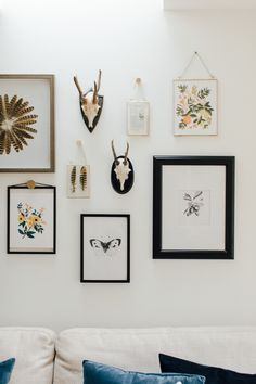 Gallery Wall Including Pheasant Feathers - A Modern Country Farrow & Ball Kitchen With Oak Parquet Flooring Open Plan Kitchen Living Room, Home Decor Kitchen, Kitchen Design, Kitchen Interior, Kitchen Ideas, Ideal Home Magazine, House And Home Magazine, Rock My Style, Style Uk