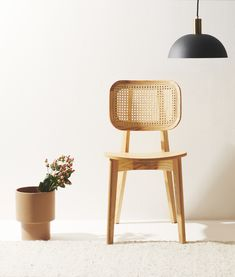Cane Chair: Cane Back Dining Chairs In Black, Blue, Green, and Natural Dinning Chairs, Living Room Chairs, Desk Chairs, Bag Chairs, Lounge Chairs, Office Chairs, Side Chairs, Dining Room, Cane Sofa