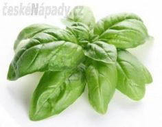 Medicinal Herbs, Spinach, Spices, Vegetables, Food, Images, Gardening, Fresh Garlic, Indian Curry