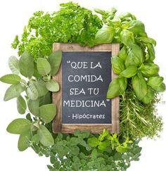 Que la comida sea tu medicina 'Hipócrates' -