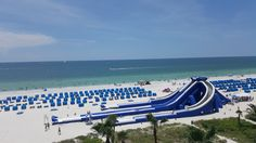Tradewind Resort St Pete Beach