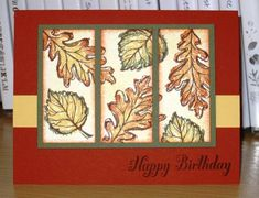 Gently Falling Birthday by Christy S. - Cards and Paper Crafts at Splitcoaststampers  (Uses SCS Sketch SC351)
