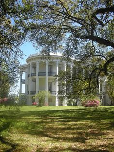 Side of Nottoway Plantation (Owned by the Randolph family. John and I went to visit on one of our trips to New Orleans.)