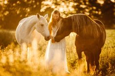 Pferde Fotografie - Jengels Fotografie- Pferde Hunde und Menschen- Raum Bonn Studio Background Images, Country Farm, Equine Photography, Horse Girl, Horseback Riding, Beautiful Horses, Fantasy Characters, Animal Kingdom, Equestrian