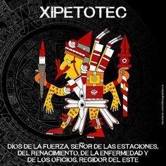 Aztec Tattoos Sleeve, Aztec Religion, Aztec Symbols, Mexican Artwork, Ancient Aztecs, Aztec Culture, Aztec Warrior, Mexico Art, Aztec Art
