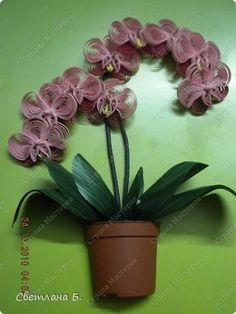 Картина панно рисунок Квиллинг Орхидеи Бумажные полосы фото 1