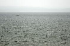 Nowy Port Gdańsk