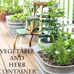 Make your own DIY herb garden using unique containers that can be found inside your home. Get tutorials for making a container herb garden from a wine box, galvanized buckets or trash cans, or from a strawberry pot. Learn what herb grow best inside each DIY herb container so you can have fresh mint, oregano and basil all year long.