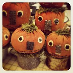 Pun'kin lattes. Fun pun'kins for fall. I will have them in the store this August.