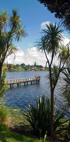 Lake Pupuke, Auckland, The North Island, New Zealand