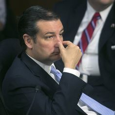 Despite GOP objections, Sen. Ted Cruz offers amendment to defund Obamacare | Twitchy