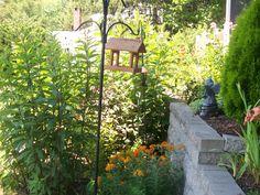 2010 - The wall pollinator garden