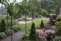 Coos Bay - Portfolio: MOSAIC GARDENS: Landscape - Garden Design and Construction in Eugene, Oregon