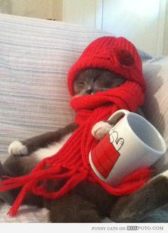 È che fa un po' freddino...