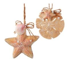 Starfish and Sand Dollar Christmas Ornaments. From the Shelley B Home and Holiday Beach Themed Christmas ornament collection. Includes beach chairs, sand buckets, anchor, sailboat ornaments and more. Seashell Ornaments, Seashell Crafts, Holiday Ornaments, Holiday Crafts, Ornaments Ideas, Ocean Crafts, Ornament Crafts, Fall Crafts, Easter Crafts