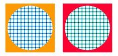 Illusion and color perception