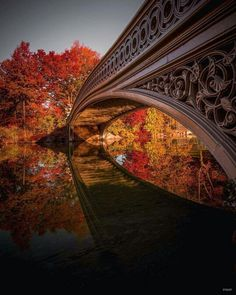 Cast iron pedestrian bridge amongst the lush Fall foliage. Bow Bridge, Central Park, New York. Photography by Central Park, Beautiful World, Beautiful Places, Beautiful Pictures, A New York Minute, Pedestrian Bridge, Park Photography, Destination Voyage, Park Photos