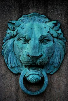 another lion