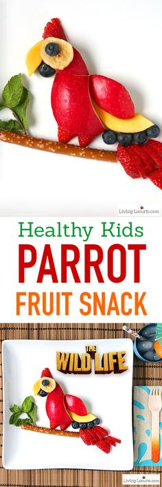 How to make a Healthy Parrot Fruit Snack for Kids! A simple treat for an after…
