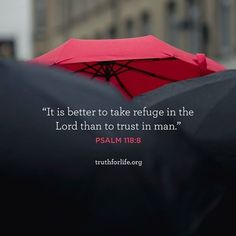 It is better to take refuge in the Lord than to trust in man. (Psalm 118:8 ESV)